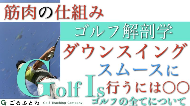 【筋肉の仕組み】ダウンスイングをスムースに行うには〇〇|ゴルフ解剖学【ゴルフイズGolfIs】